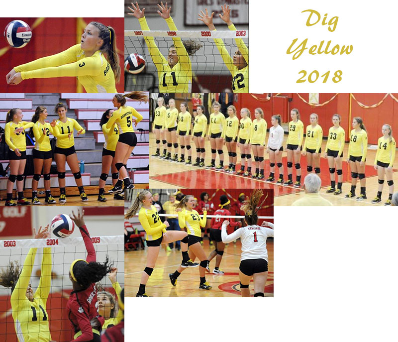 Dig Yellow